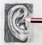 Fül rajzolás gyermek tanfi